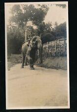 Ceylon Animals Elephant Sacred Steps c1930s? photograph