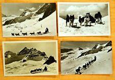 4 Photo Postcards DOG SLEDS Jungfraujoch Bern Switzerland rppc 1950's