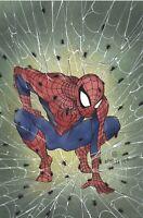 Spider-Man #1 * NM+ * Facsimile Edition Peach Momoko Virgin Exclusive PreOrder