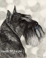 Dog Art,Paint,Ink,Pencil Schnauzer Print#6,By PK Ufnal