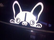 Peeping French  Bulldog Cute Sneaky Frenchie  Window Car Decal Sticker