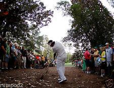 Golf  Poster - Bubba Watson - Winning Shot 2013 Masters - 17x22 inch