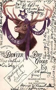 Postcard The Denver Dry Goods Company Headquarters Elk Souvenirs Postmarked 1906