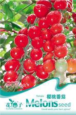 1 Pack 30 Red Mini Tomato Seeds Cherry Tomato Organic B040