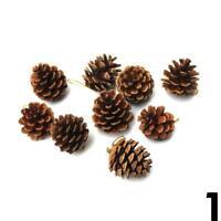 6pcs Christmas Pine Cones Baubles Santa Claus Xmas Tree Party Ornament AUS