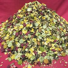 Raspberry Hamster Food 2 Kg SMELLS GREAT Rats Gerbils Rodent Mix Dwarf Hamsters