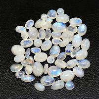 AAA 49.05 CTS / 55 PCS NATURAL RICH BLUE FLASH MOONSTONE OVAL SHAPED GEMSTONES