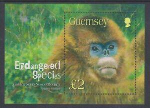 Guernsey - 2004, Golden Snub Nosed Monkey sheet - MNH - SG MS1016