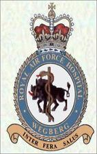 RAF Royal Air Force Hospital Wegberg crested Fridge Magnet