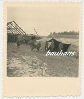 Foto Tarnzelt-LKW-DRK-Kennung  2.WK  (a233)