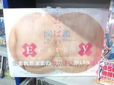 OPPAI ZUKAN Actual Size Ecstasy Japanese Girls Book Full Scale Visual Dictionary
