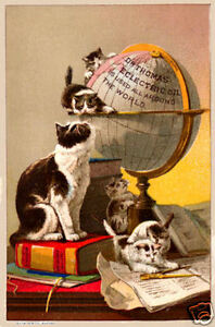 Cats on a world globe Vintage art poster print Home Decor Wall Hangings A4