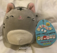 New Squishmallow Tally The Grey Cat  Plush 4 inch slow rise