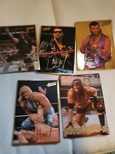 Wwf Action Packed 1994 Cards X5