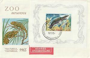 1965 Belgium FDC cover Antrwepen Zoo
