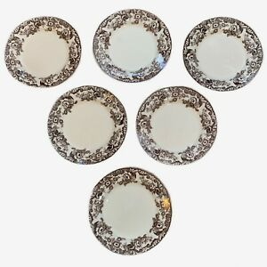 6 Spode Delamere Brown Dinner Plates Made In England Floral Mint Condition