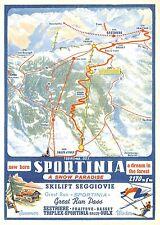 5559) NEW BORN SPORTINIA (SAUZE D'OULX AOSTA) A DREAM IN THE FOREST. SEGGIOVIE.