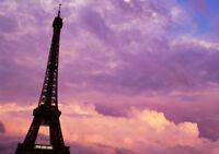 PARIS PURPLE PINK SUNSET NEW A3 CANVAS GICLEE ART PRINT POSTER FRAMED