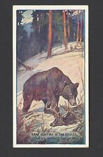 HUDDEN - SPORTS AND PASTIMES - #10 BEAR HUNTING IN THE ROCKIES