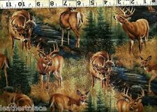 Springs Creative ~ Stoney Brook - DEER  BUCKS DOE ~ 100% Cotton Quilt Fabric BTY