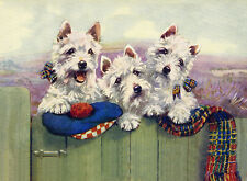 WEST HIGHLAND WHITE TERRIER WESTIE DOG GREETINGS NOTE CARD THREE DOGS AT GATE