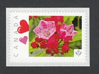 KALMIA OLYMPIC FIRE Flower Picture Postage stamp LIMITED Canada 2014 [p83fl5/4]