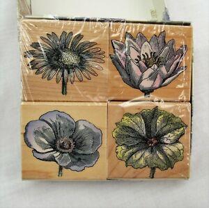 4 Rubber Stamps Poetic prints petals Hero Arts flower blossom engravings