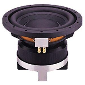 """P-Audio TM-10 10"""" Woofer  Split Voice Coils  Amazing SUbwoofer at Dealer cost"""