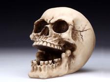 Skull Ashtray Figurine Statue Skeleton Halloween