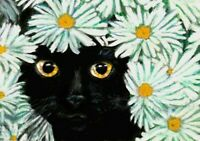 BCB Black Cat Hiding in the Daisies Print of Painting ACEO 2.5 x 3.5 Inches