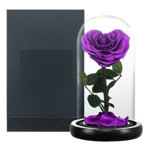 Heart Shaped Rose In Glass Dome Preserved Beauty Eternal Artificial Flower Gift