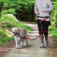 Trixie Bauchgurt mit Leine für mittelgroße und große Hunde, rot