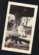Antique Photograph Adorable Little Girl Sitting on Table Around Bottom of Tree