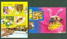 Togo 2014 - Bienen Honigbienen Imkerei Honey bees Abeilles Abejas Apis mellifera
