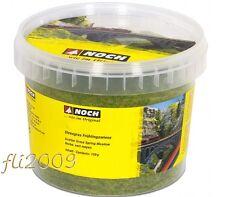 * Noch 08151 erba in fibre prato estivo in barattolo gr.120