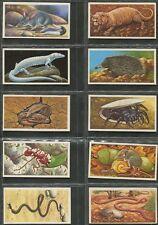 BROOKE BOND: 1986 Incredible Creatures, complete set (40).