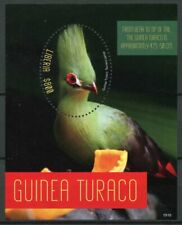 Liberia 2019 MNH Guinea Turaco 1S/S Turacos Birds Stamps