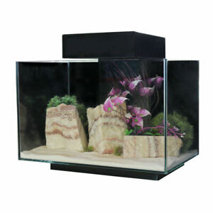 Aqua One Platform 21 Aquarium Fish Tank 40cm 21L