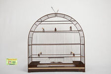 Cages For Other Wooden Birds Canary Nº8 Curios Bicudo Canarios