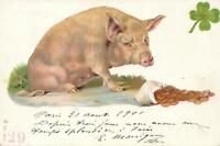 1901 VINTAGE FRENCH GOOD LUCK PIG & BAG of GOLD COINS POSTCARD - to Lyon France