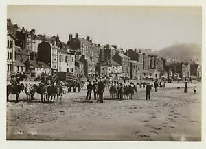 Scarborough - Adult School Coffee Van & Donkeys 1895 Photo By Frith