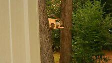 Hand Crafted Squirrel Feeder