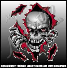 SKULL RIPPER -  220mm X 185mm - DECALS - BOAT DECALS