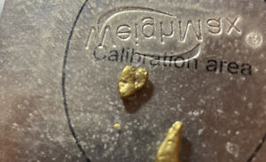 2020 PLACIER GOLD NUGGET! PURCHASED FROM NUGGETS BY GRANT!!!! 1.33 GRAMS