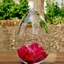 Egg Glass Flower Vase Micro Landscape DIY Terrarium Bottle Pot Candlestick