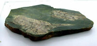 398.2 Gram Lizardite Arizona Slice Slab Cabochon Cab Gem Gemstone Rough LS2