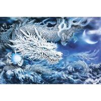 5D Full Drill Diamond Painting White Dragon Embroidery Cross Crafts Kits Decors