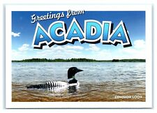 Postcard Greetings from Acadia, Maine Me - Common Loon, Geico Gecko K8