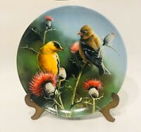 """Vtg Edwin Knowles Kevin Daniel Fine China  """"The Goldfinch"""" Home  8.5"""" Birds"""