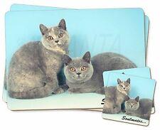 British Blue-Cream Cats 'Soulmates Twin 2x Placemats+2x Coasters Set i, SOUL-3PC
